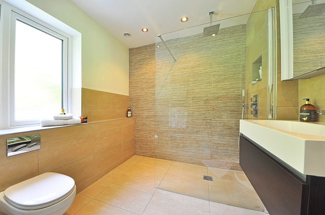 bathroom-1336165_640
